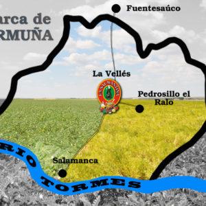 COMARCA DE LENTEJA DE LA ARMUÑA